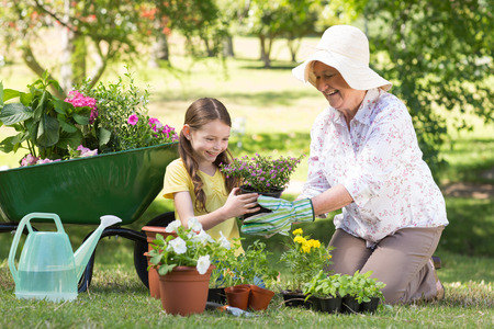 46061942 - happy grandmother with her granddaughter gardening on a sunny day